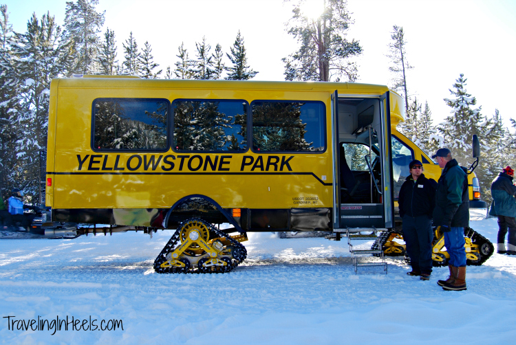 Winter in Yellowstone National Park includes a ride in the Snowcat.