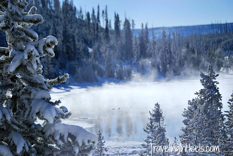 Winter wonderland Yellowstone National Park