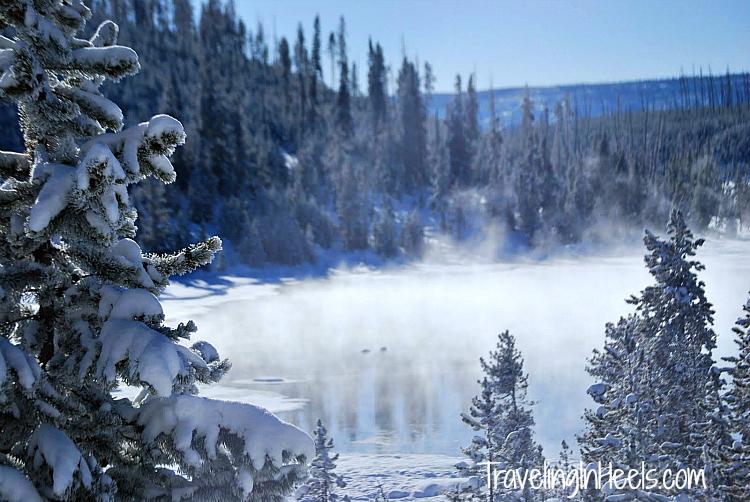 Winter wonderland Yellowstone National Park