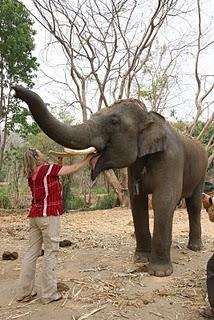 Patera_elephant_farm