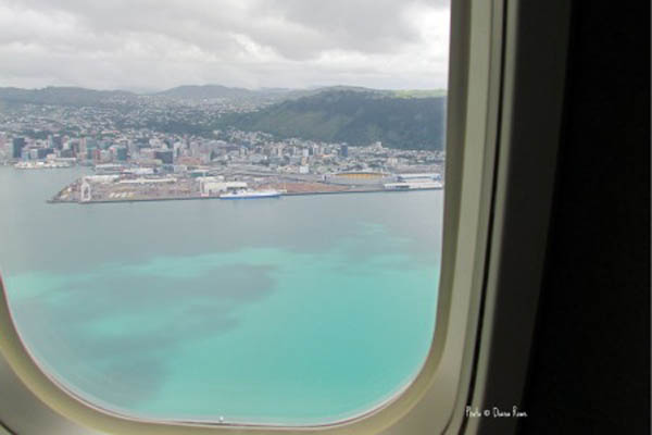 View of New Zealand from my Air New Zealand flight