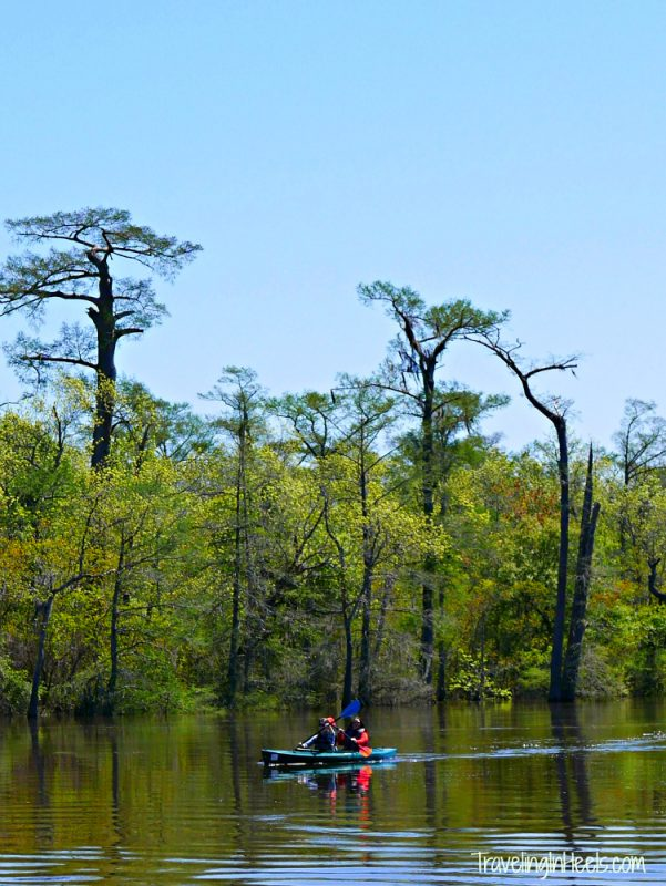 Beaumont Neches River Kayak