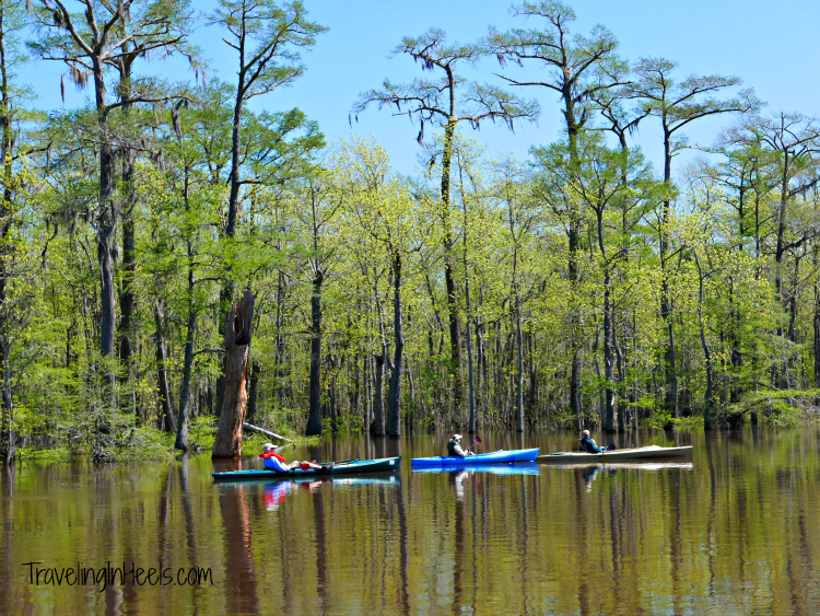 Beaumont Paddling the Neches River