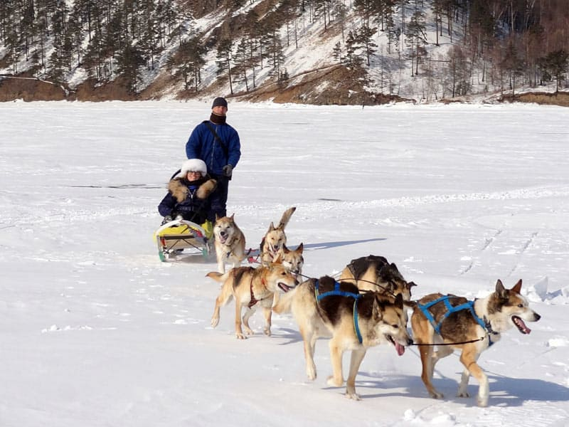 Best Destinations for Travel Adventures include dog-sledding in Siberia.