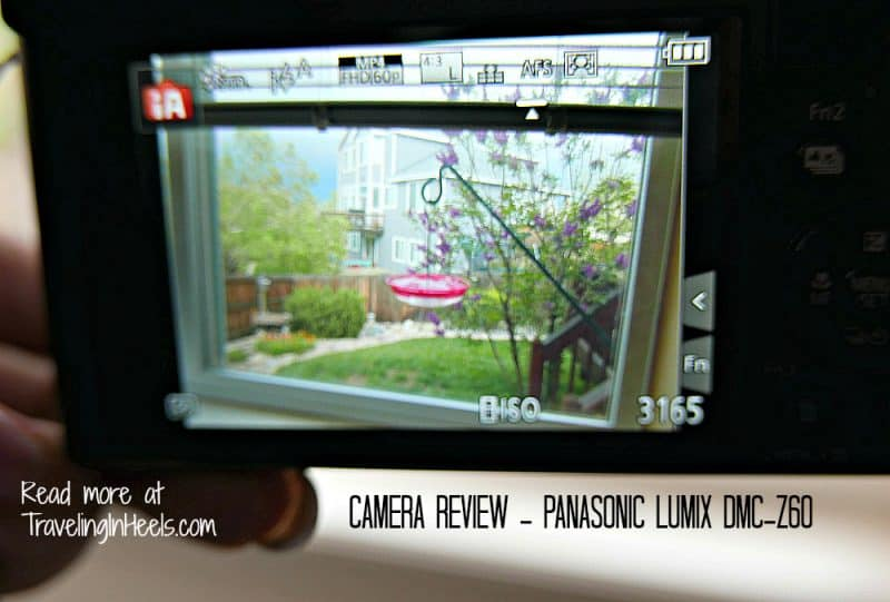 Yeah or meh? Should the new Panasonic Lumix DMC-ZS60 be your next family point and shoot camera?