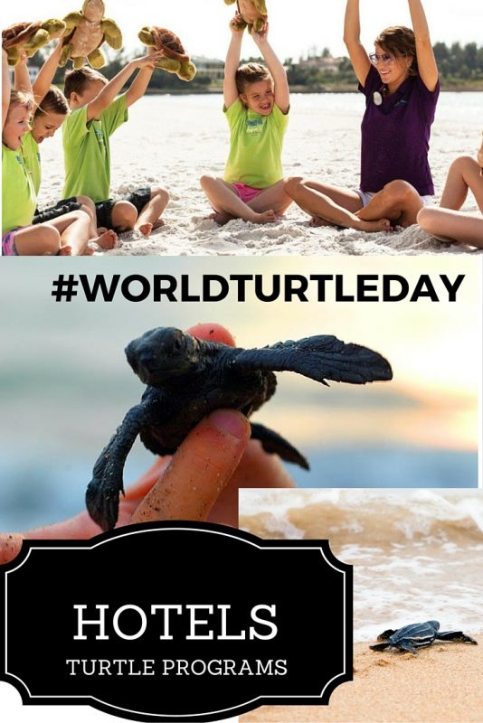Hotels offering Turtle Programs #WordTurtleDay