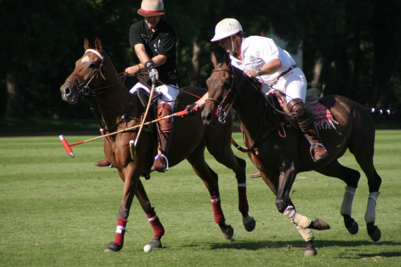Did you know that Buenos Aires is the capital of polo? Photo credit: Fllickr-hooken