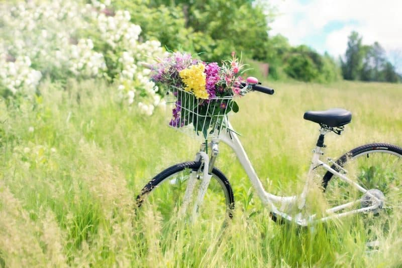 Spring Break Family Travel: Procrastinator or Planner?