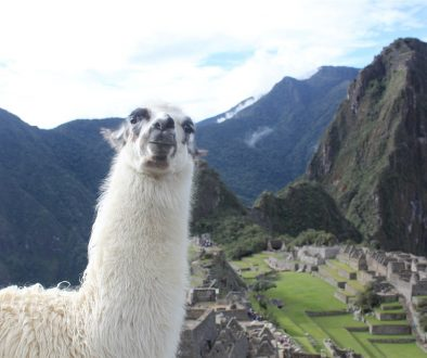 Who doesn't dream of the iconic and historic view of Machu Picchu, Peru?