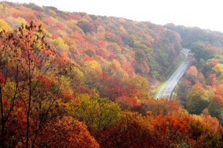 Things to do in North Carolina include a fall leaf peeping road trip in the autmun