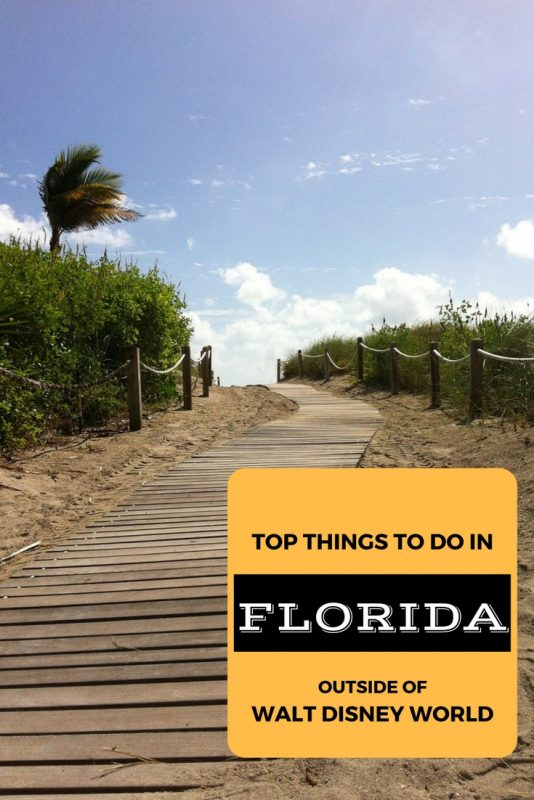 Top things to do in Florida outside of Disney World