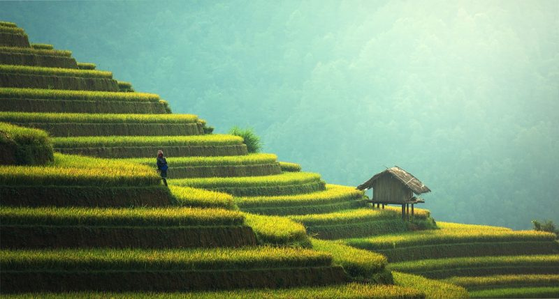 Ways to Make the Most Of Your Trip to Asia include getting off the beaten path.