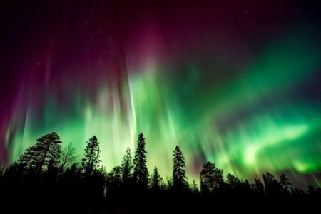 Ready to experience a once in a lifetime show from Mother Nature? The Northern Lights: Everything You Need To Know