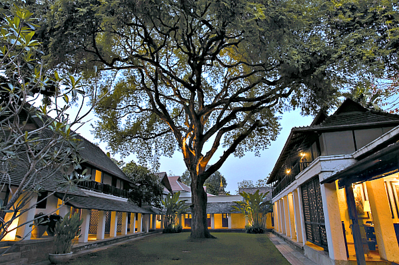 Chiang Mai Boutique hotel Tamarind Village takes its name from the stately 200 year old Tamarind tree in the center of the main courtyard. Photo Credit: Tamarind Village