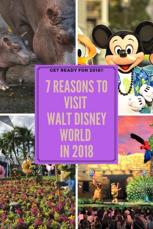 7 Reasons to Visit Walt Disney World in 2018