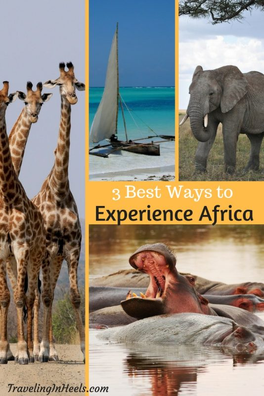3 best ways to experience Africa. Photos: Pixabay