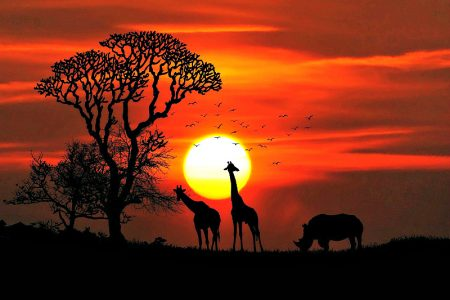 One of the best ways to experience Africa is its sunsets.