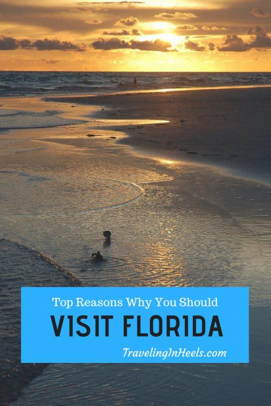 Top Reasons Why You Should Visit Florida