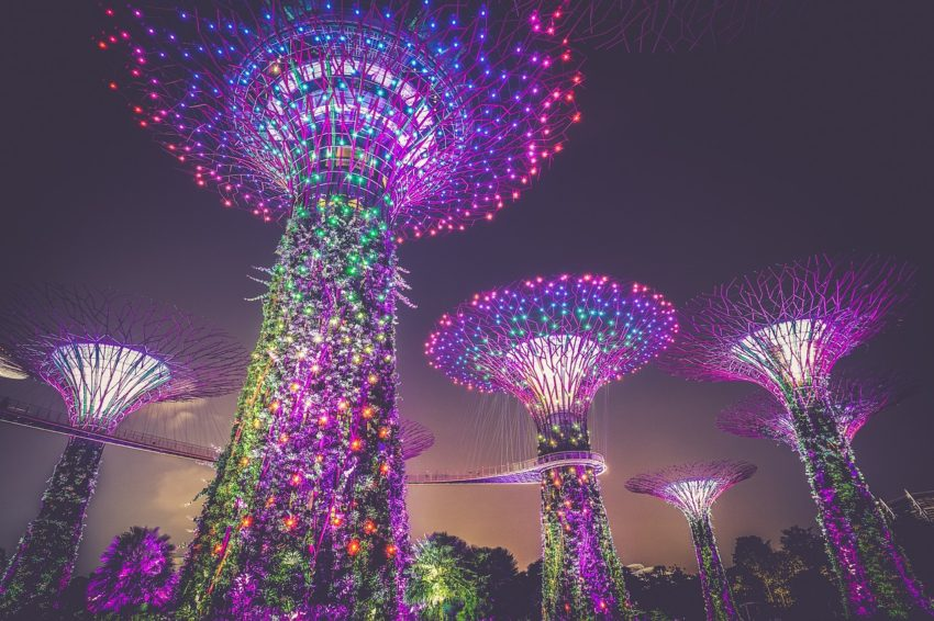 Singapore's magnificent Supertrees will dazzle visitors with the music and lights, entertaining daily during the Garden Rhapsody light and sound shows.