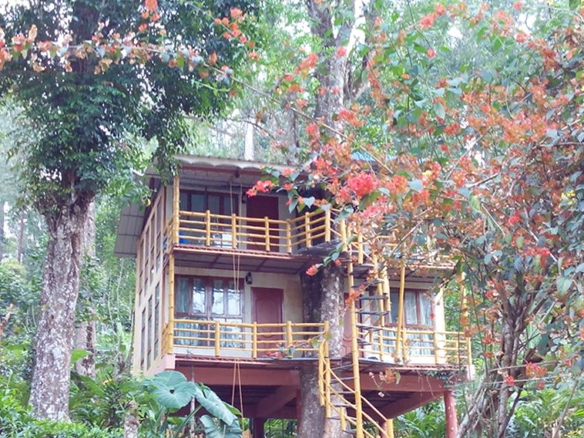 Jungle Jive Tree House Munnar is located in Munnar district, 9.3 miles away from Munnar Town