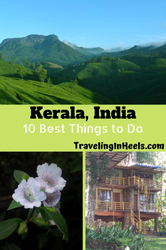 From national parks and wildlife to stays in tree houses, these are best 10 things to do in Kerala, India. #Indiatravel #keralaindia #familyvacation #multigenerational #multigentravel