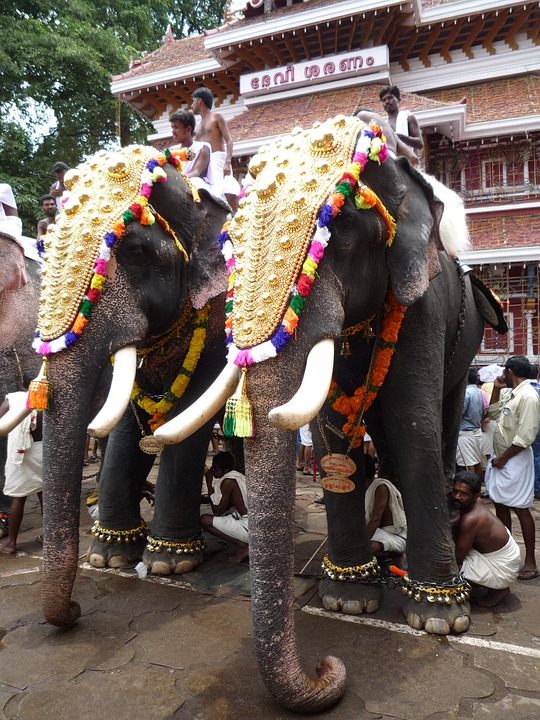 One of the most colorful temple festivals in India is celebrated in Thrissur, Kerala, in the Malyalam month of Medom (usually around April-May)