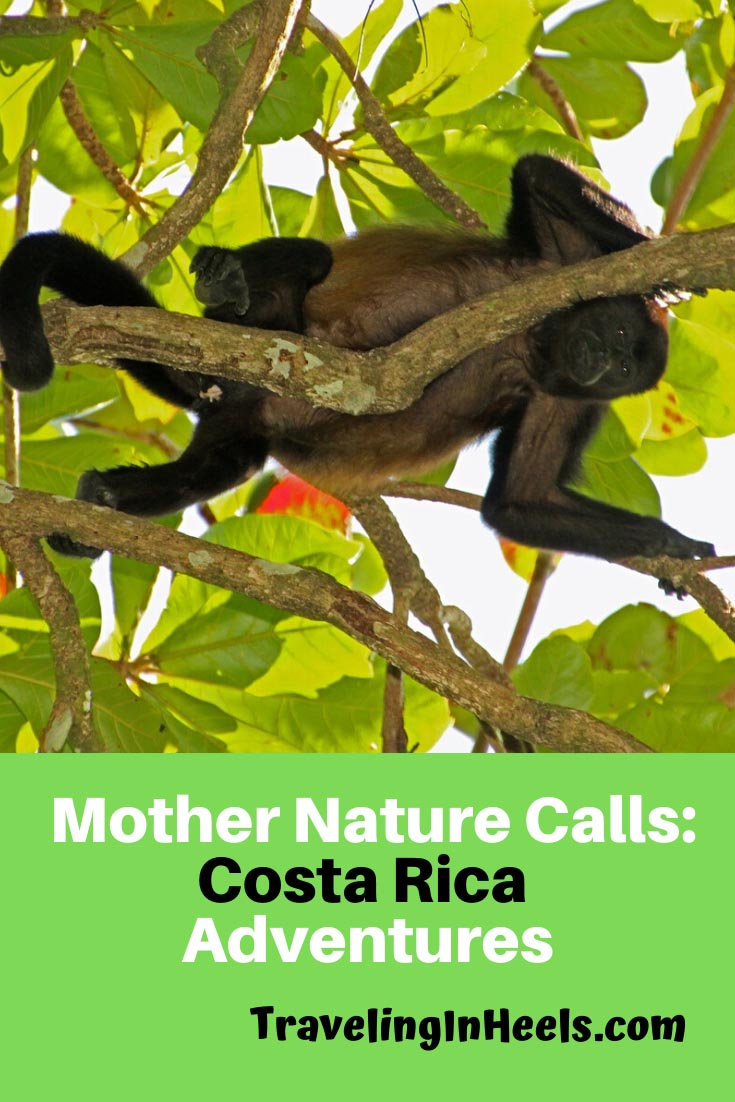 From Zip lining to wildlife sightings, Costa Rica adventures should be your next vacation #costarica #costaricaadventures #familyvacation #multigentravel