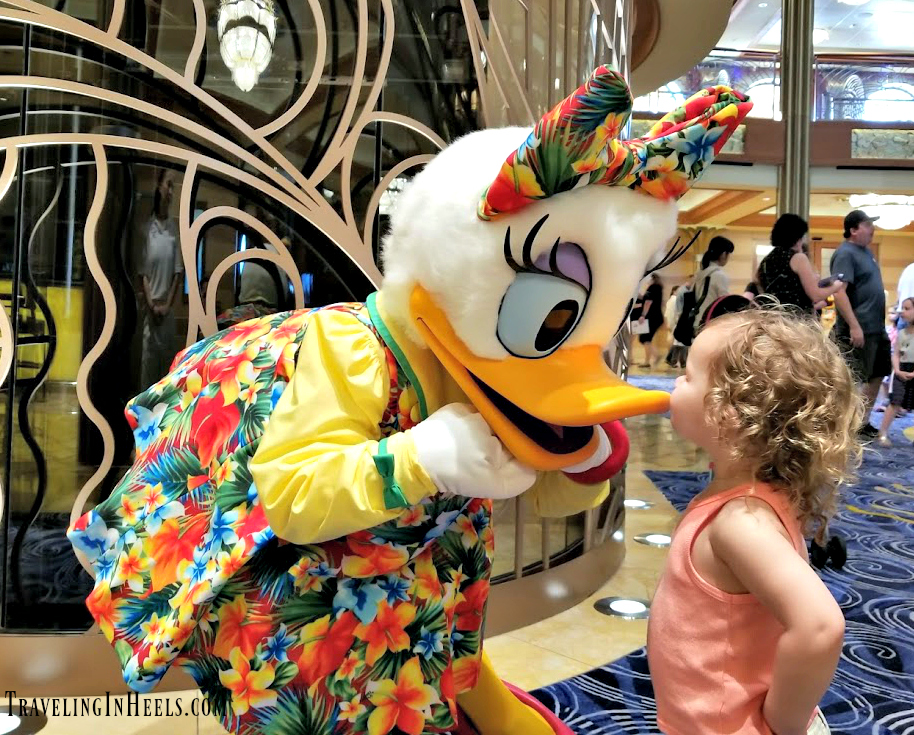 Disney Cruise Line offers an abundance of character meet & greets including with Daisy Duck on the Disney Dream.