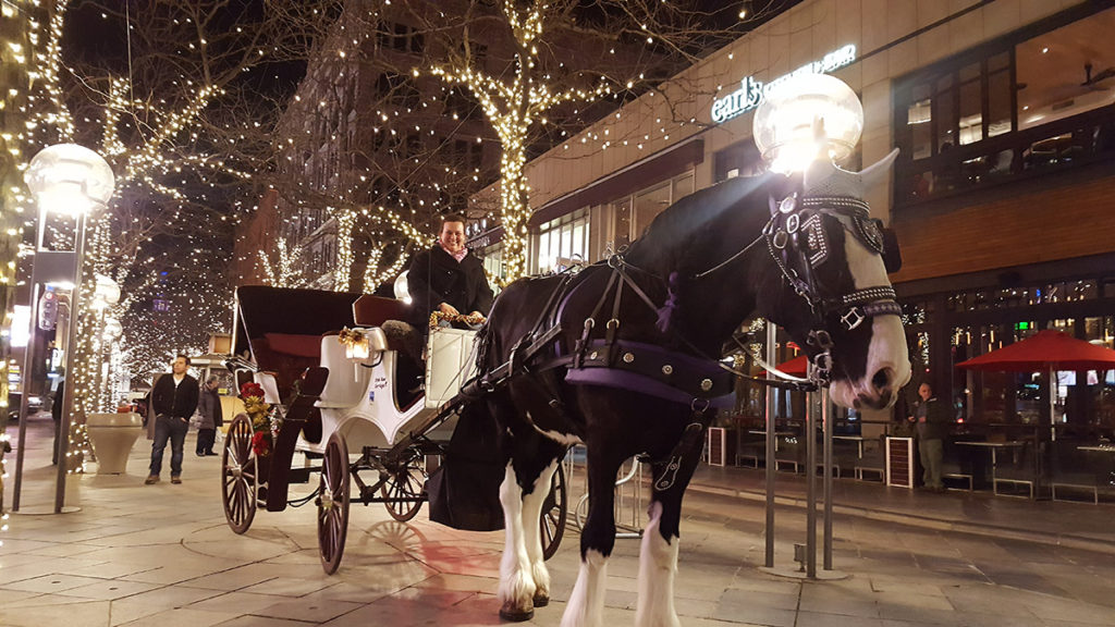 Want a perfect romantic things to do in Denver? Book a romantic horse carriage ride. Photo: Irish Rose Drafts