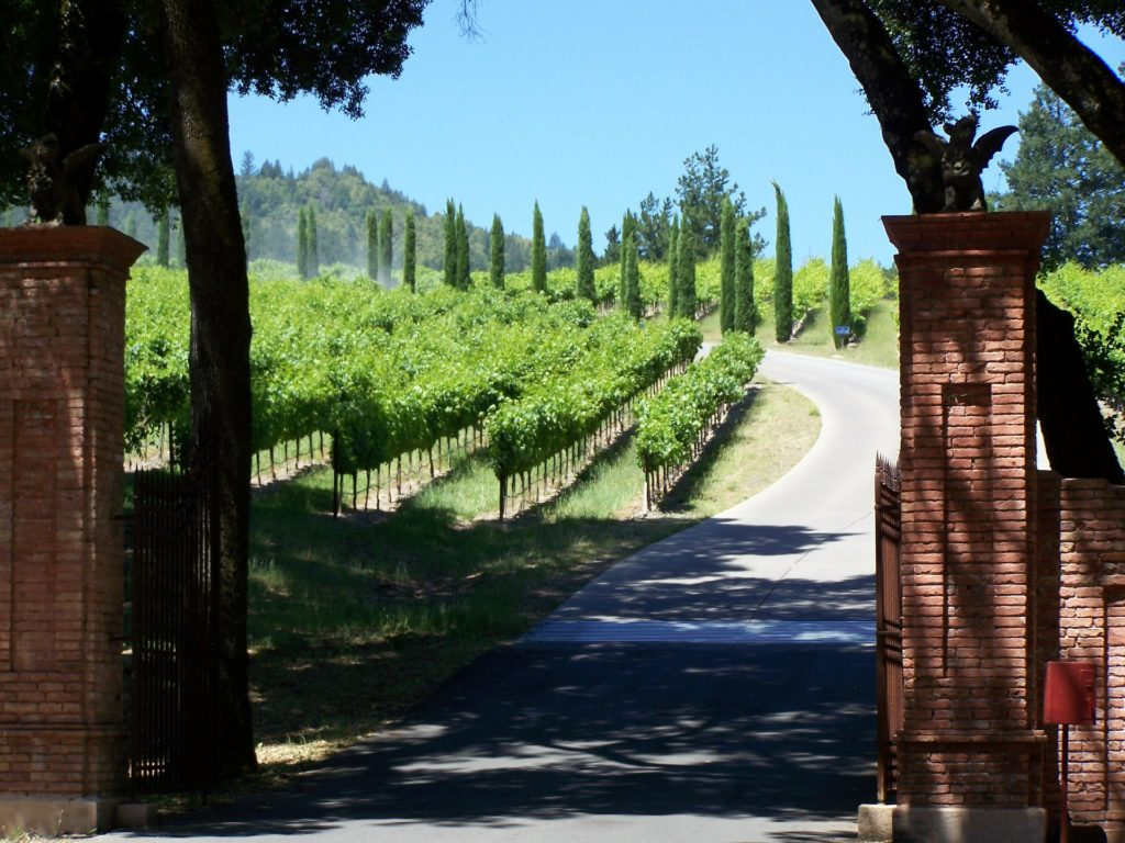 Wine lovers should experience a visit to Napa Valley wine country in California to their top USA attractions.