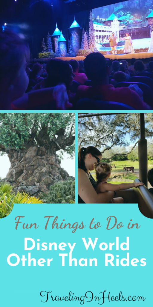 Fun things to do at Walt Disney World Other than Rides #waltdisneyworld #funthingsdisneyworldotherthanrides #disneyworldvacation #disneyvacation #familyvacation #multigentravel