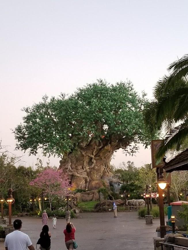 Celebrating the world's animals, the Tree of Life is the iconic symbol of Disney's Animal Kingdom theme park at Walt Disney World Resort near Orlando, Florida.