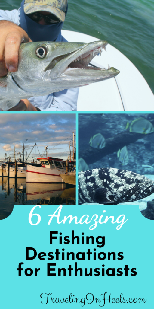From Alaska to Australia, here are 6 amazing fishing destinations for enthusiasts. #fishingdestinations #fishingvessels #bucketlistfishing #fishing