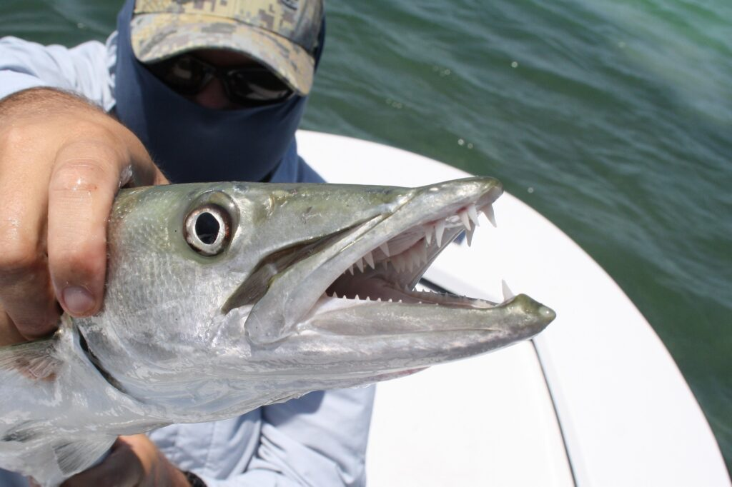 Enthusiasts always name Key West as one of the top fishing destinations