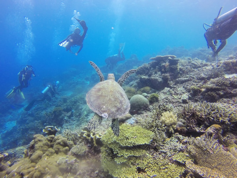 The most important scuba diving refresher tip is your safety and those with you.